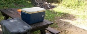 Is it Better to Drain Water From a Cooler? My Verdict
