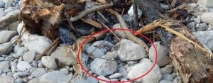 How to Avoid Exploding Campfire Rocks? New Insights